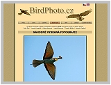 Bezvadné fotografie ptáků - birdphoto.cz